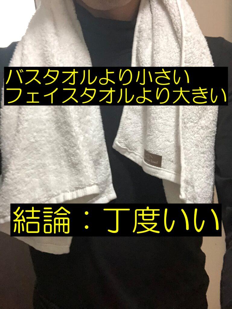 バスタオルほど大きくなくてフェイスタオルより大きいタオル【レビュー】
